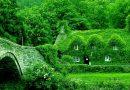 Conseils simples pour entretenir une maison verte et protéger votre environnement