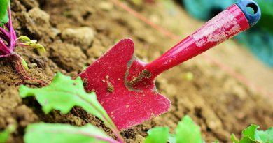 mal dos jardinage